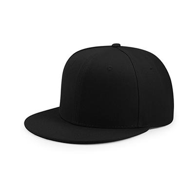 8770ec58c SNAPBACK HATS-Products | Hatdream